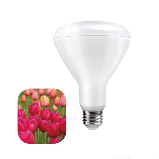 LED žiarovka pre kvitnutie rastlín 12W, E27, IP44